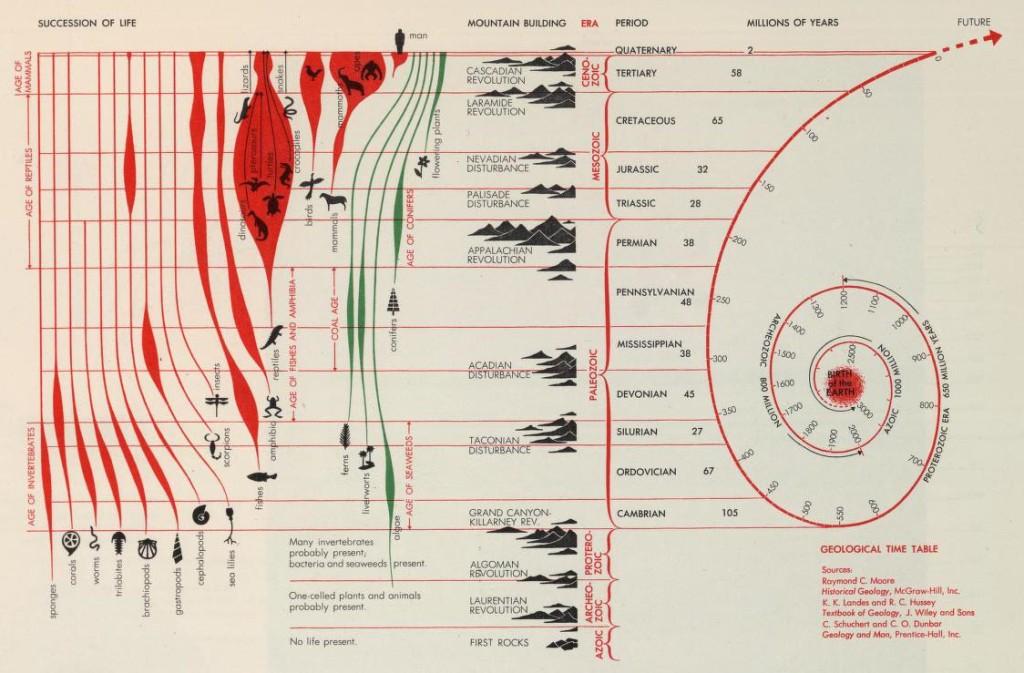取材自:http://www.codex99.com/design/the-world-geographical-atlas.html